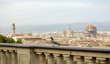 Florence Piazzas-View from Piazzale Michelangelo
