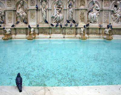 Siena-Fountain