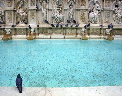 Siena-Fountain